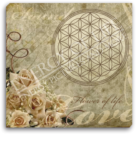 Leinwandbild Blume des Lebens - Klang und Liebe
