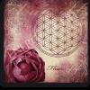 Energiebild Blume des Lebens + Liebe