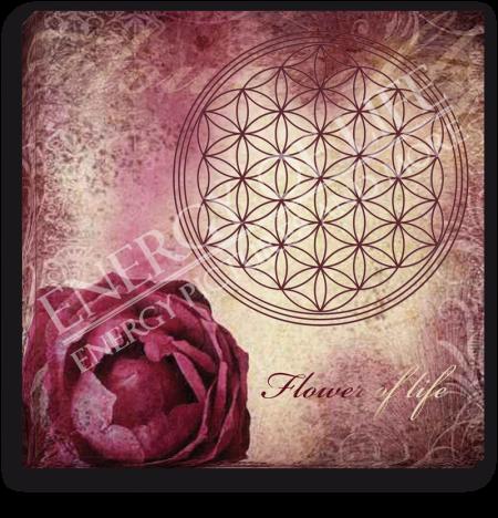 Leinwandbild Blume des Lebens - Liebe