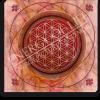 Energiebild Blume des Lebens + karmische Harmonisierung