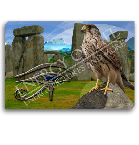 Leinwandbild Krafttier Falke