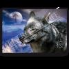 Leinwandbild Krafttier Wolf