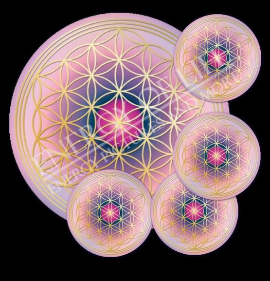 Untersetzer Lebensblume Balance - rund - Set