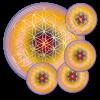 Untersetzer Blume des Lebens Selbstausdruck - rund - Set