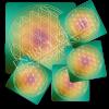 Untersetzer Blume des Lebens -Harmonisierung-Set