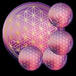 Untersetzer Blume des Lebens Spiritualität - rund - Set