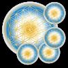 Untersetzer Blume des Lebens Klarheit - rund - Set