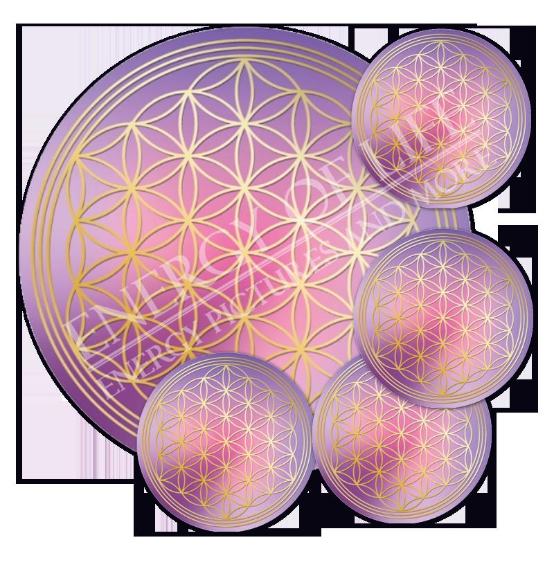 1 Untersetzer Blume des Lebens Acrylglas-Untersetzer für Gläser