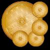 Lebensblume Untersetzer rund -Erdung-Set